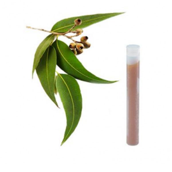Характеристики Набор сменных фильтров для насадок AROMA SENSE — манго/лимон
